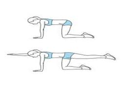 Bird Dog Exercise for runners